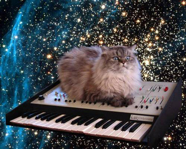 catinspace1