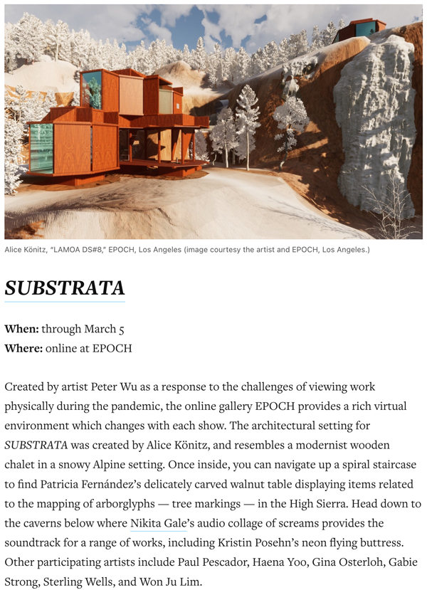 SUBSTRATA in Hyperallergic